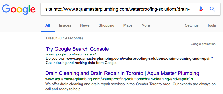 Example of how to check if your site is listed in Google (Drain Cleaning)